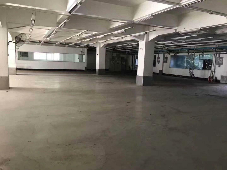 横岗六约新出厂房3600平,价格便宜形象非常好,空地大好停车