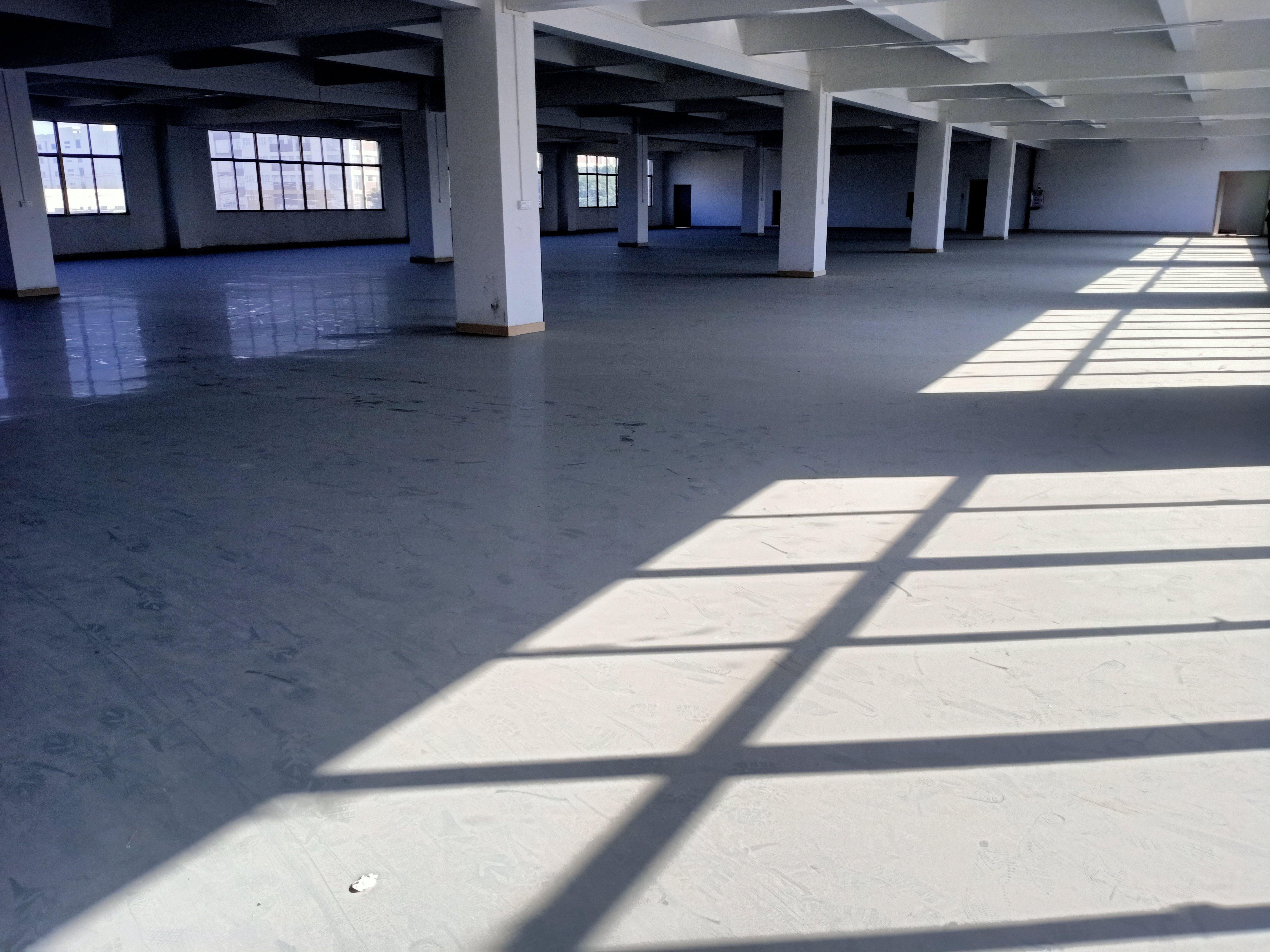 望牛墩原房东独院标准厂房6800平实际面积国有证工业用地
