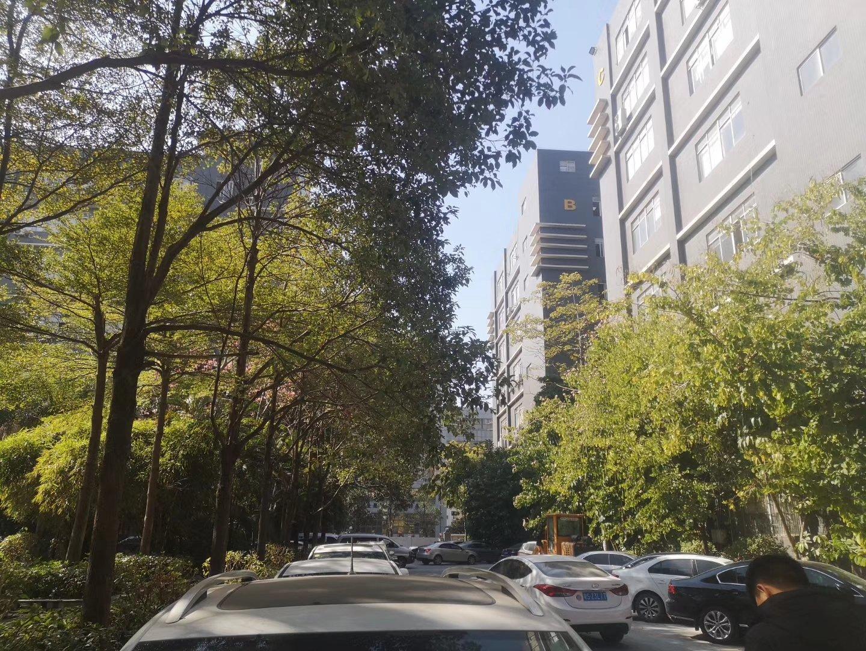 梅关高速出口附近不到一公里观光路边成花园厂房一楼1350平米