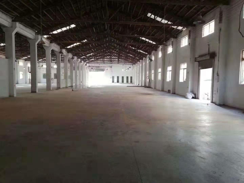 南庄镇新钢构带牛角大小可分租8000平米!!!