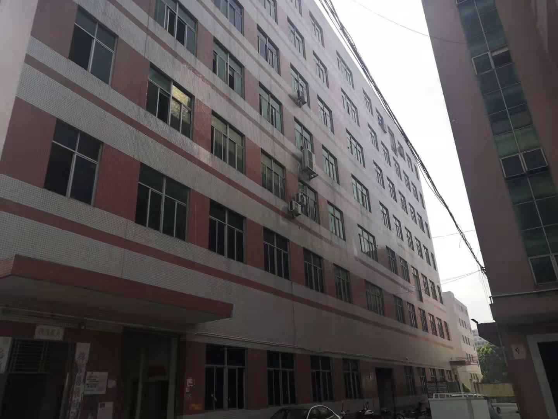 福永塘尾唐美商场旁600平米红本带装修厂房出租