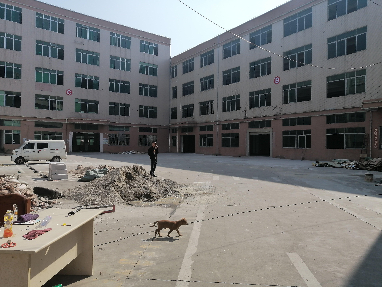平湖华南城地铁口附近食品厂3300平米出租可做仓库中央厨房等