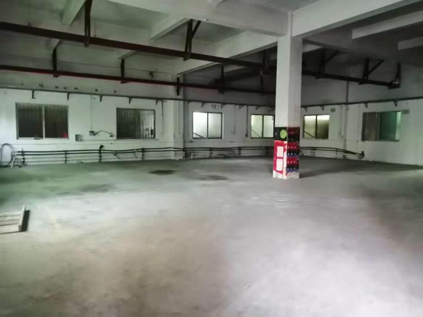 虎门北栅新出一楼精装修厂房