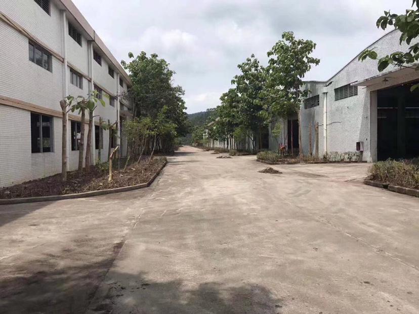 江门蓬江区荷塘60000方单一层厂房出租
