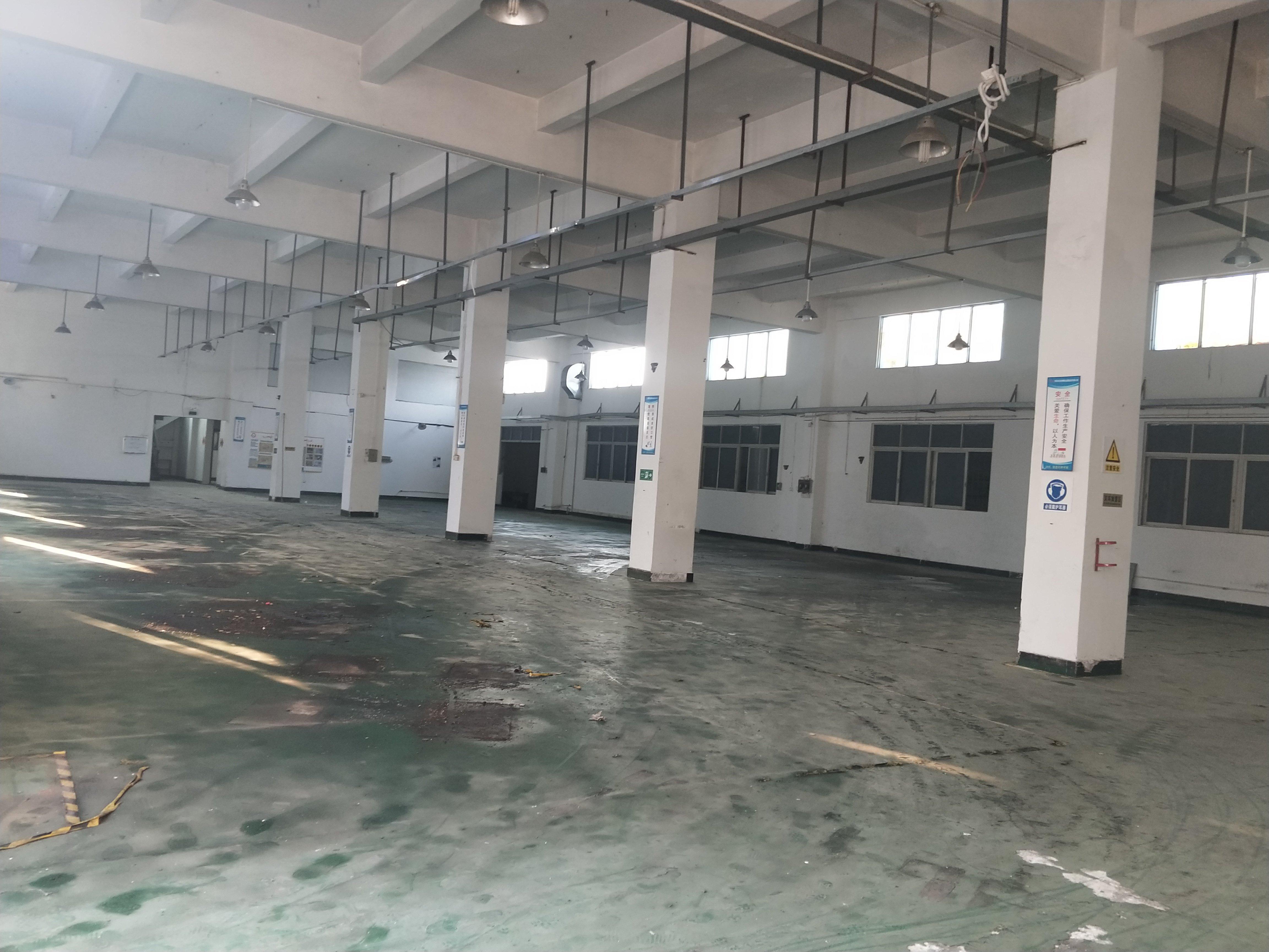 横沥镇原房东独院仓库出租5000平