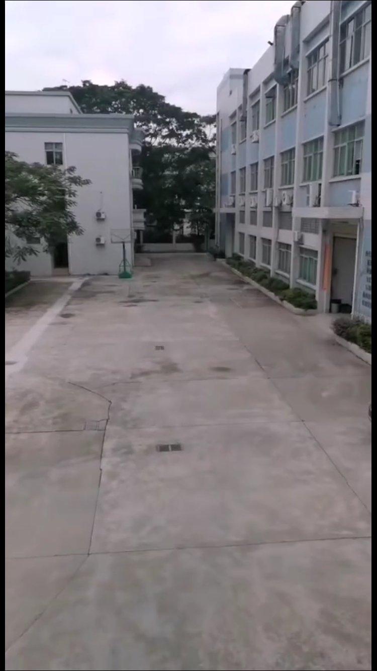 广州南沙区国有证厂房出售占地3544建筑9100独院厂房出售