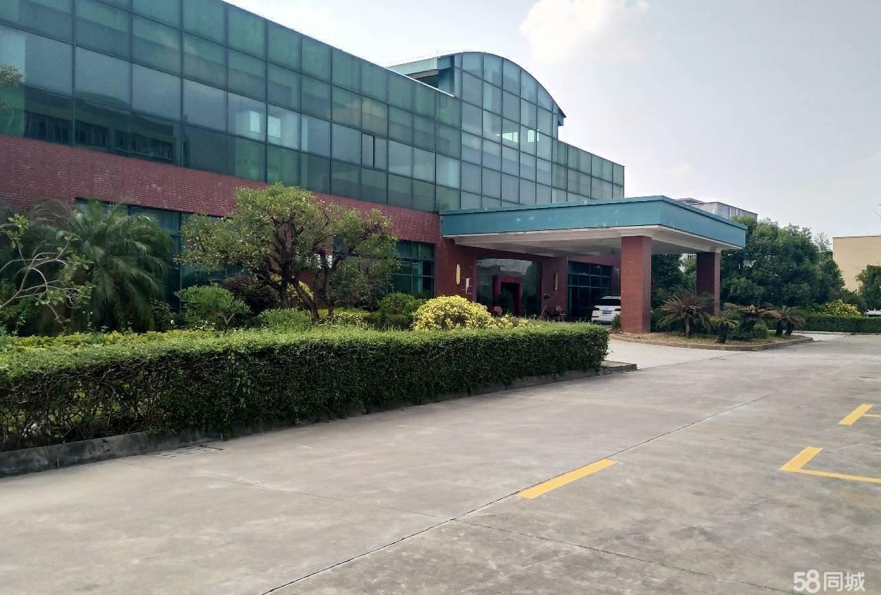 惠东县白花大阳坳钢结构厂房11800平方出租