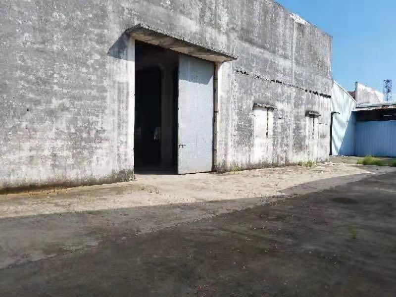 里水镇新出标准厂房2000平米现成行车免费使用