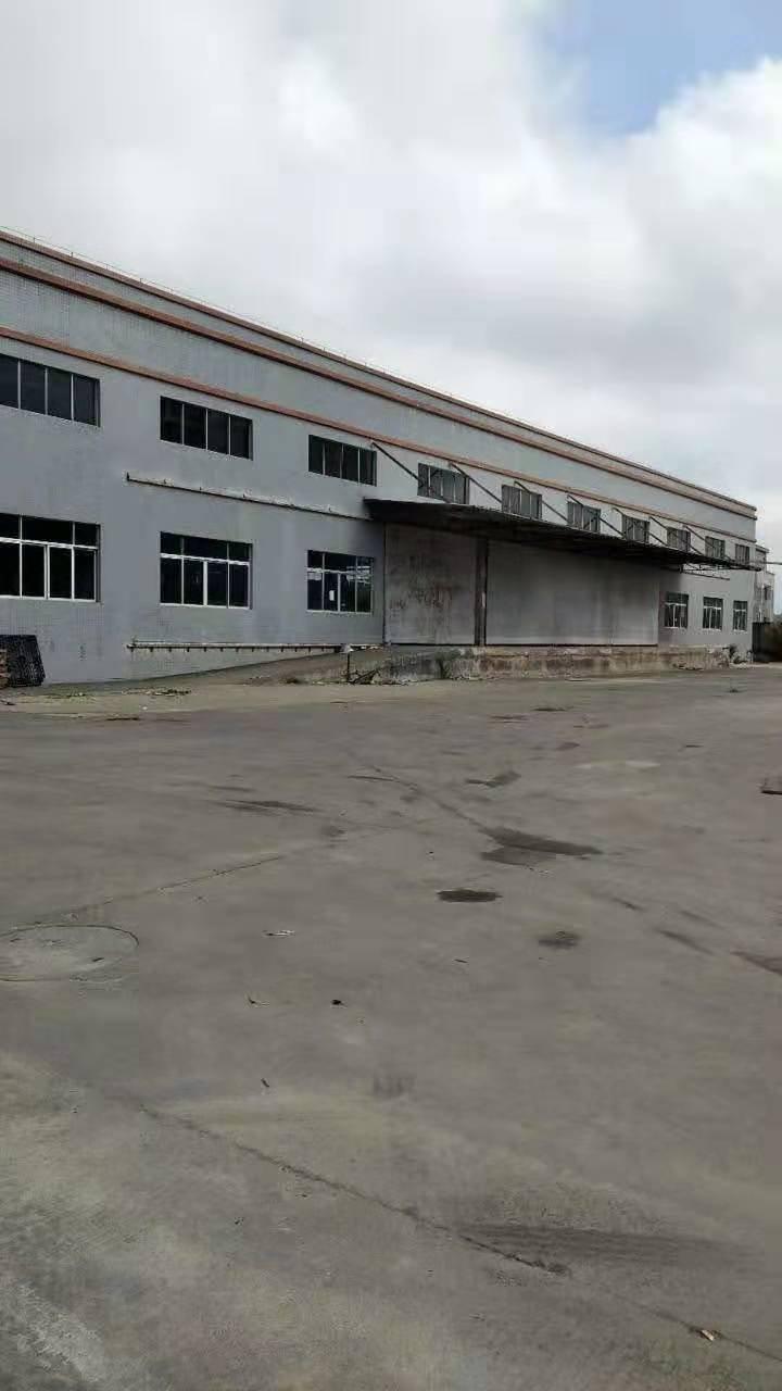 惠东白花镇新出独院钢结构4000平方