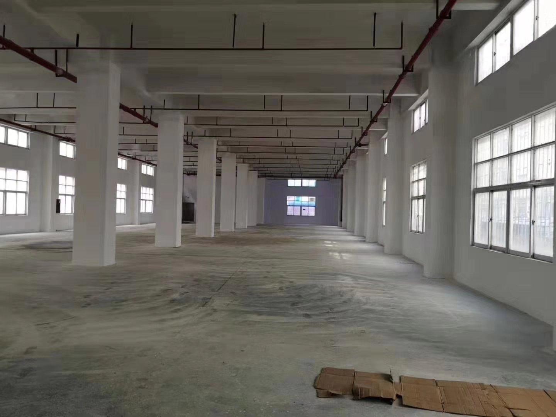 坪地坪西市场新出小独院一楼1550平方仓库,可实际面积量,