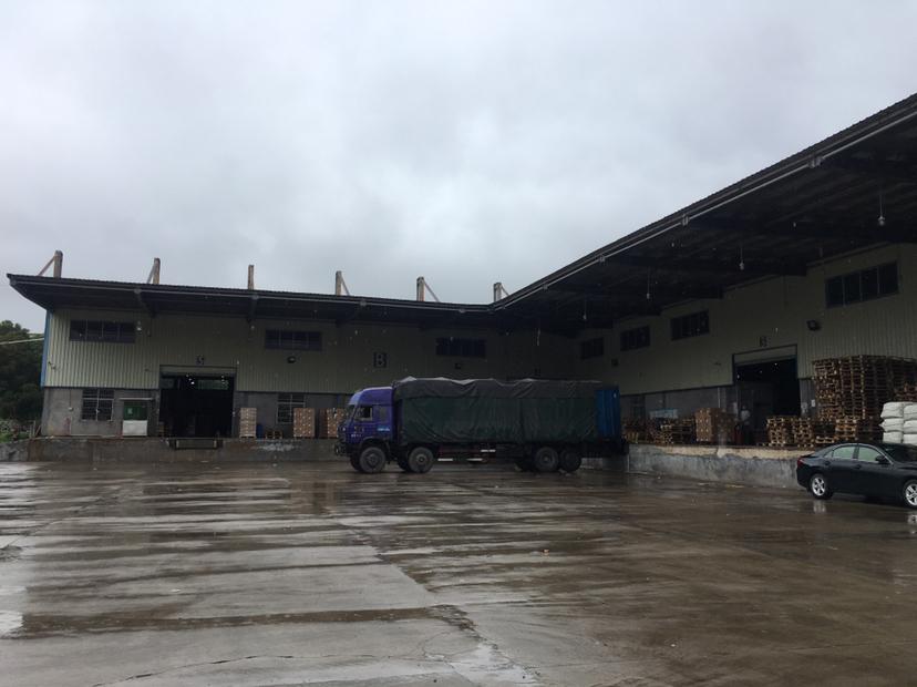 龙丰高速附近滴水9M单一层5000平可分租带卸货平台