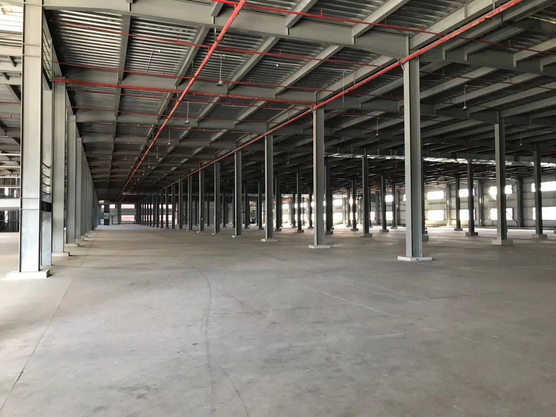 东莞市麻涌镇18000平方物流仓库招租,10000平方。