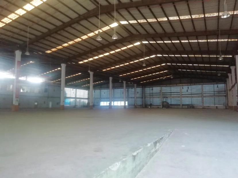 沙井街道新出12000平钢构,可以做仓库
