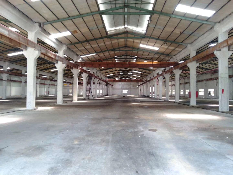 惠阳新圩镇独院带行车钢构厂房8000平