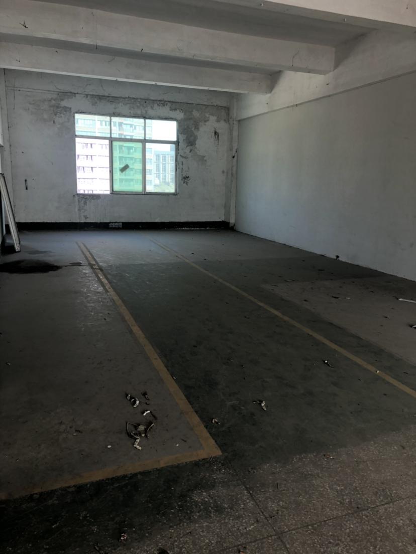 横岗主干道边新出四楼带装修厂房合同长价格低于行情-图3