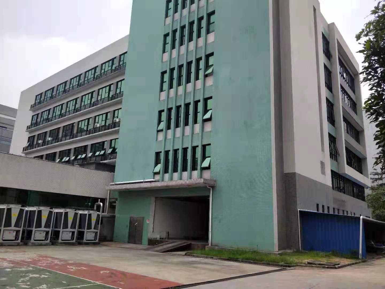 广州市黄埔主干道边国有双证3100平方独门独院厂房出售