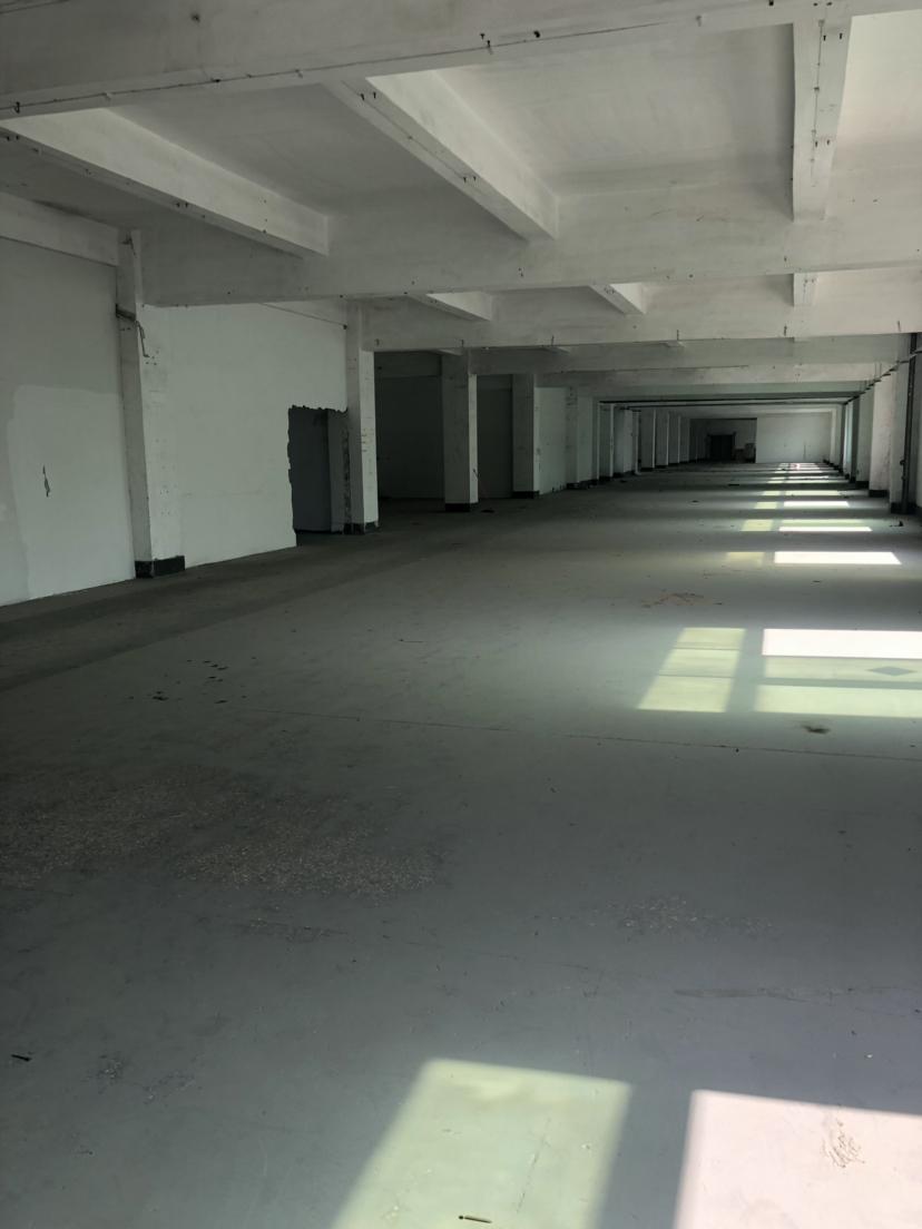 横岗主干道边新出四楼带装修厂房合同长价格低于行情-图5
