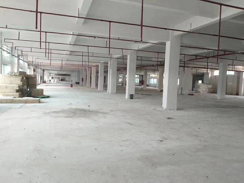 东莞惠州实际面积3000平红本厂房空地大