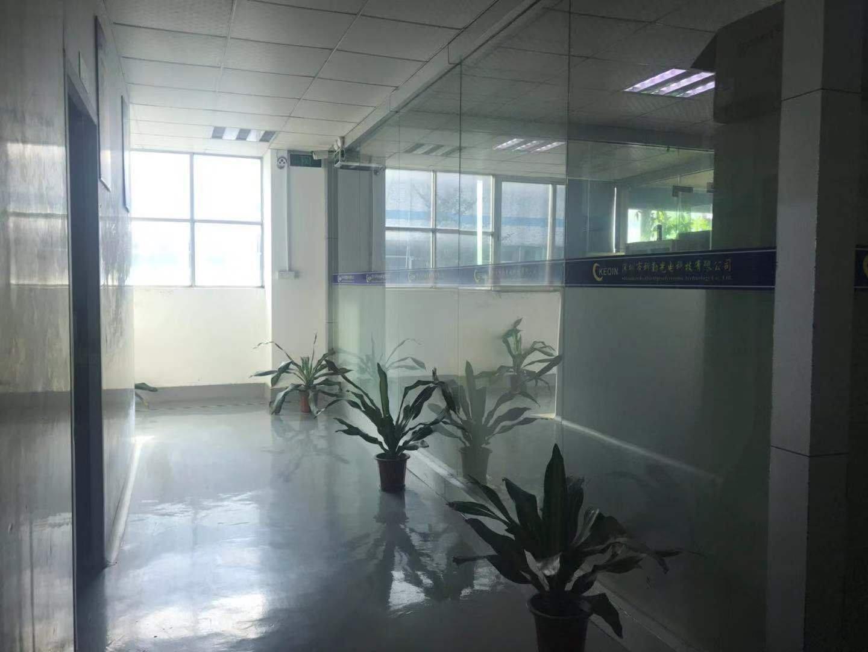 西乡九围新出楼上1000平精装修厂房出租