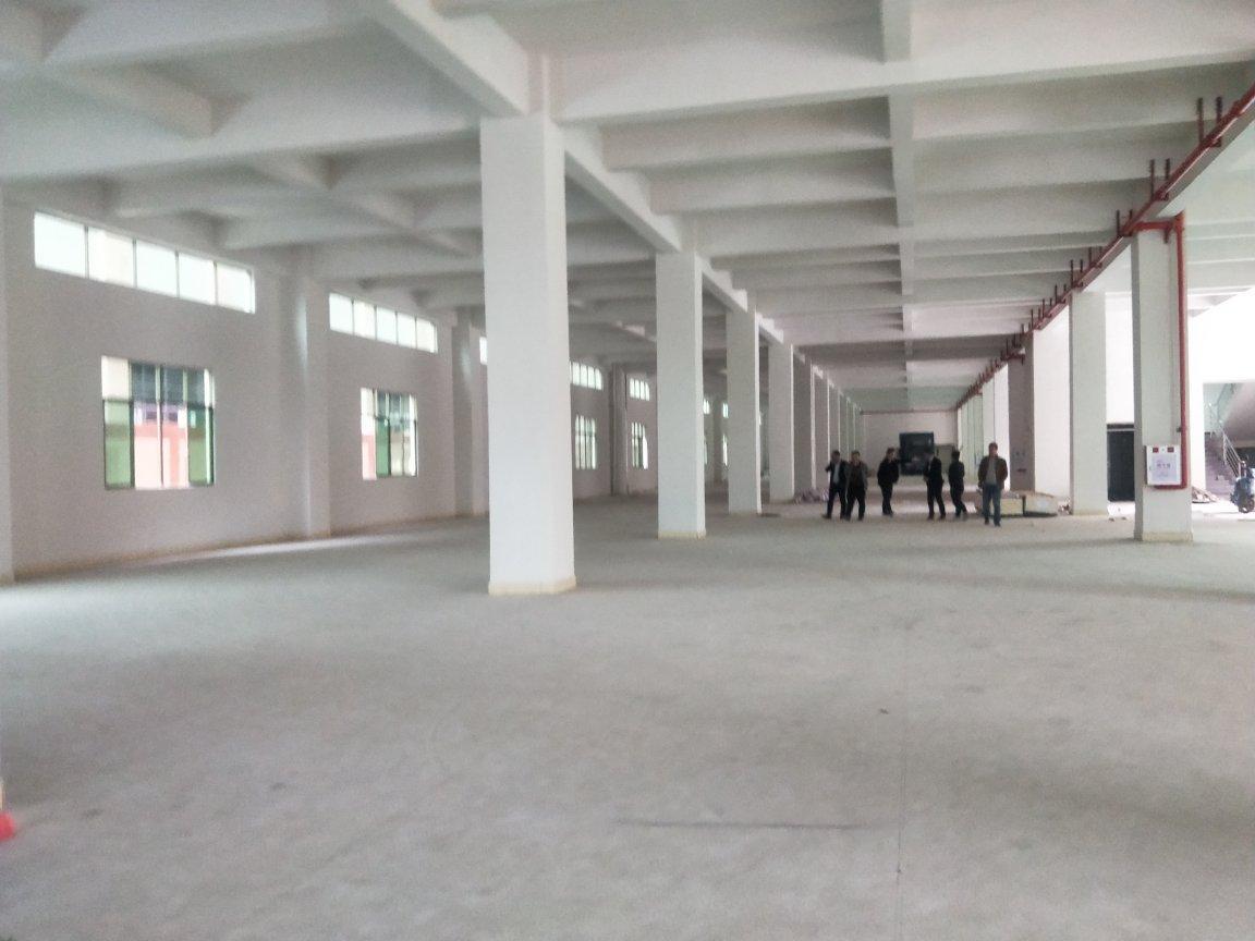 企石镇一楼标准7米厂房出租