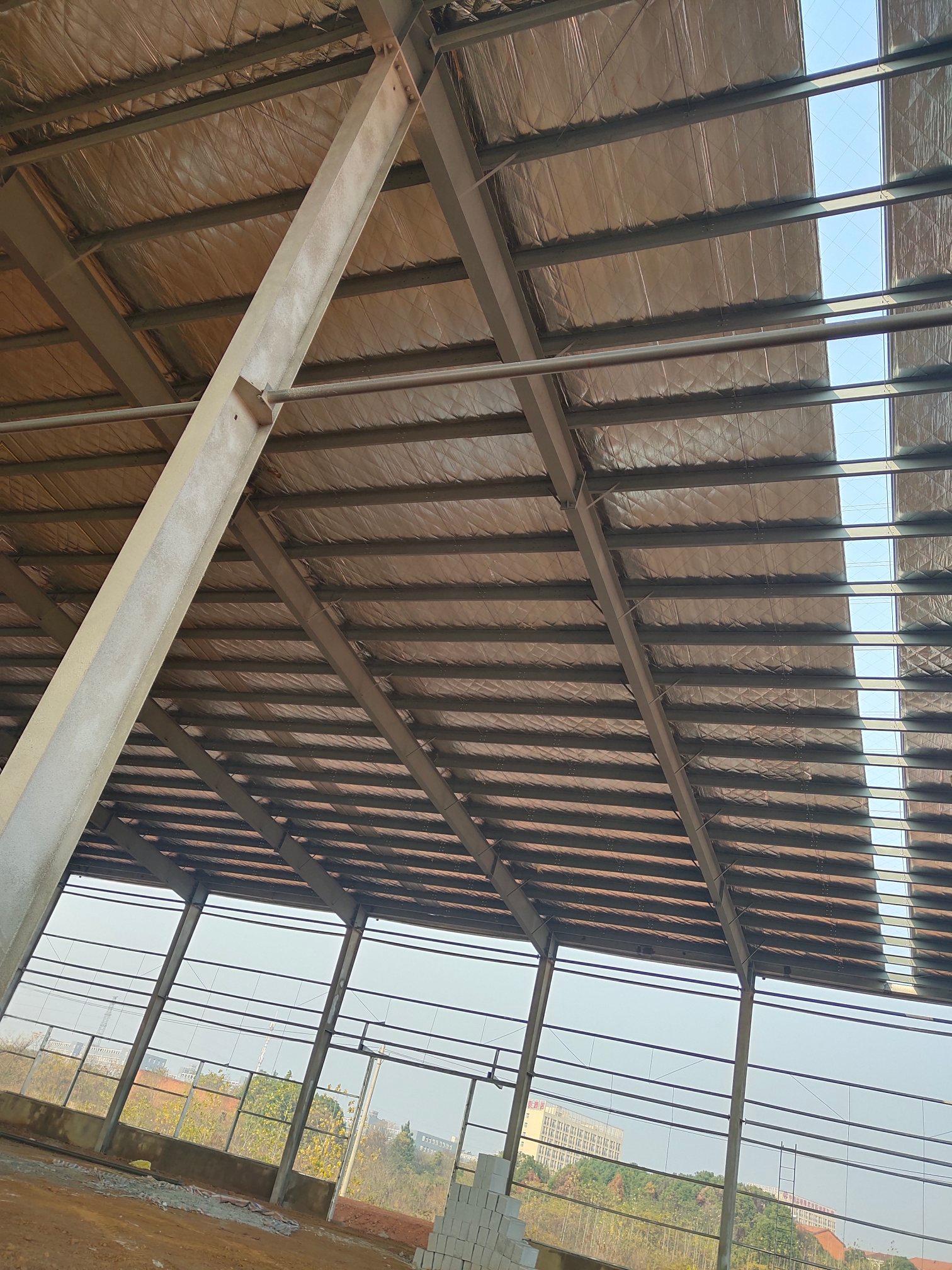 汉口北全新标准钢构厂房出租,带行轨
