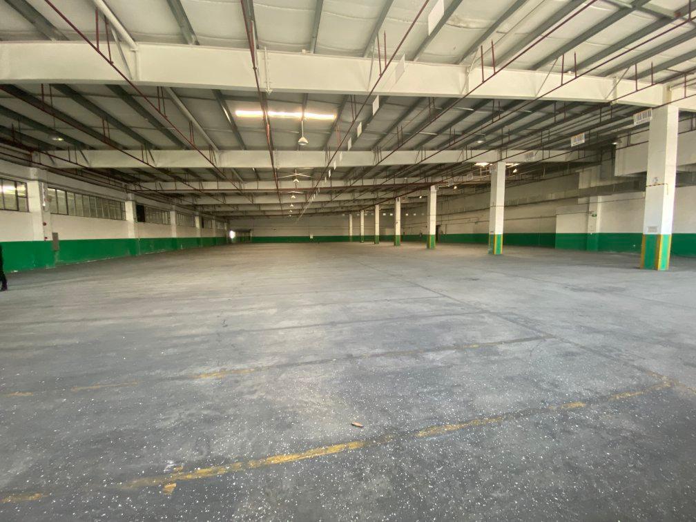 南村3600平单一层物流仓库,滴水7米,带卸货平台,可分租
