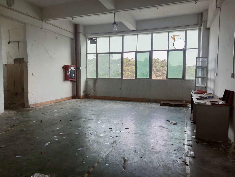 西乡新出厂房可办公,仓库,小加工