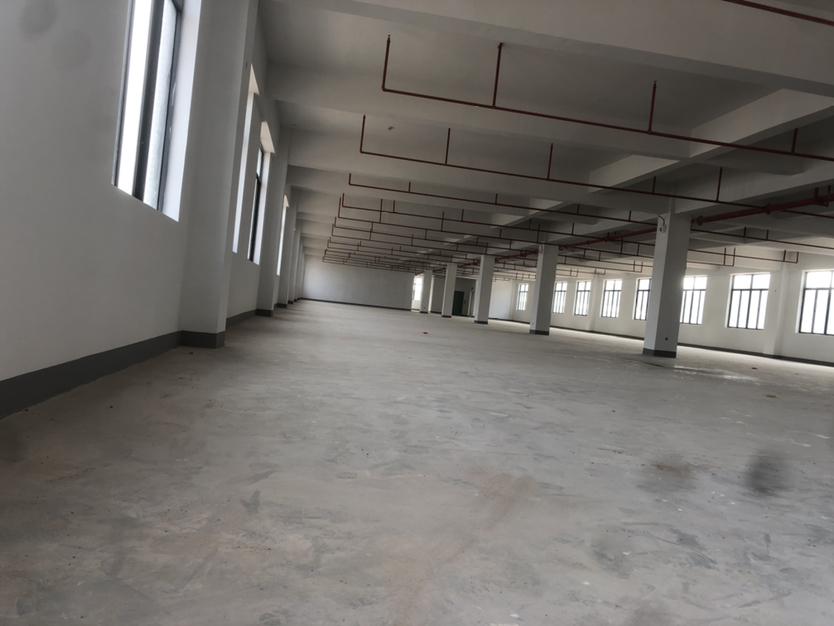 马安镇全新独门独院厂房4200平方1楼7米高出租