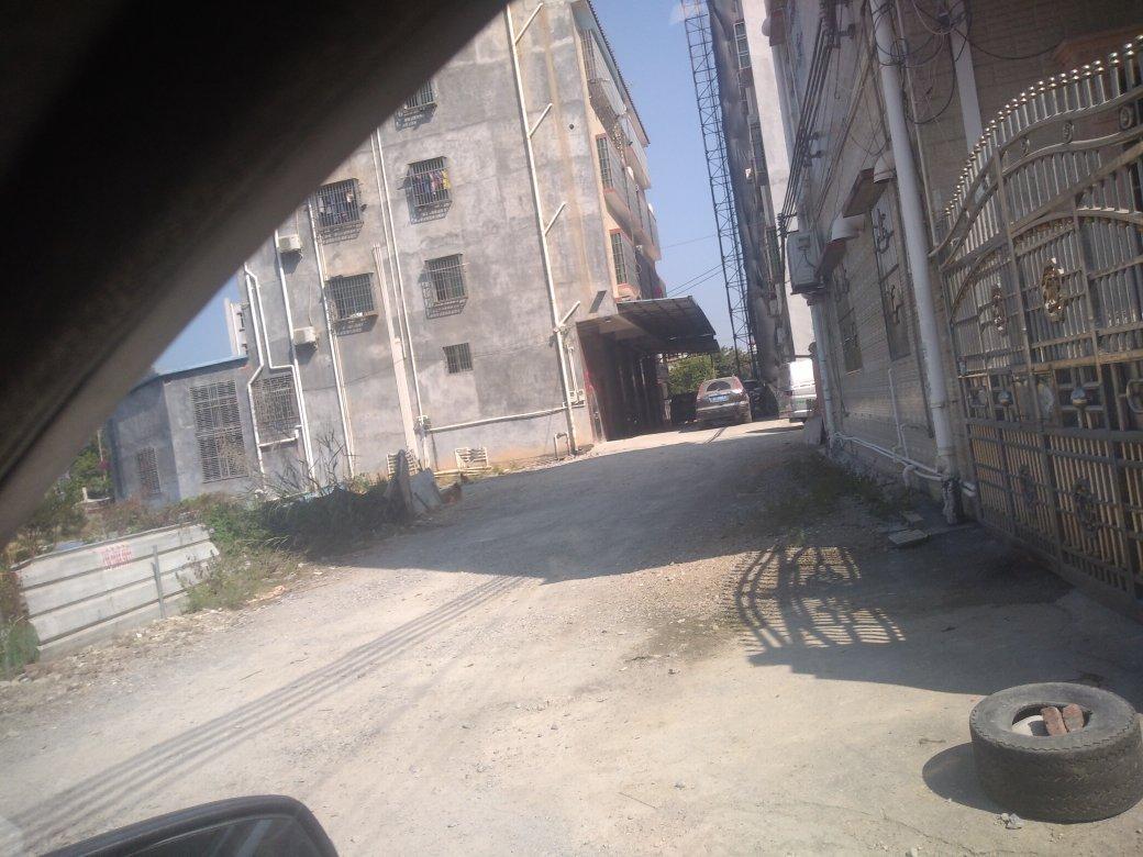 惠东白花谟岭村委附近原房东独栋楼房仓库一千平出租