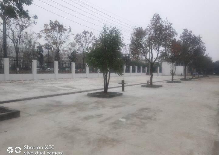 青白江八阵大道旁(佳飞建材旁)工业办公楼出租图片8