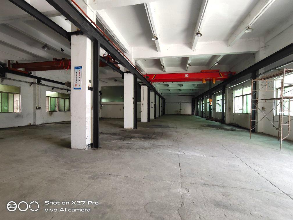 塘厦大坪新出标准一楼1500㎡带现成行车水电齐全有办公室火抢-图4