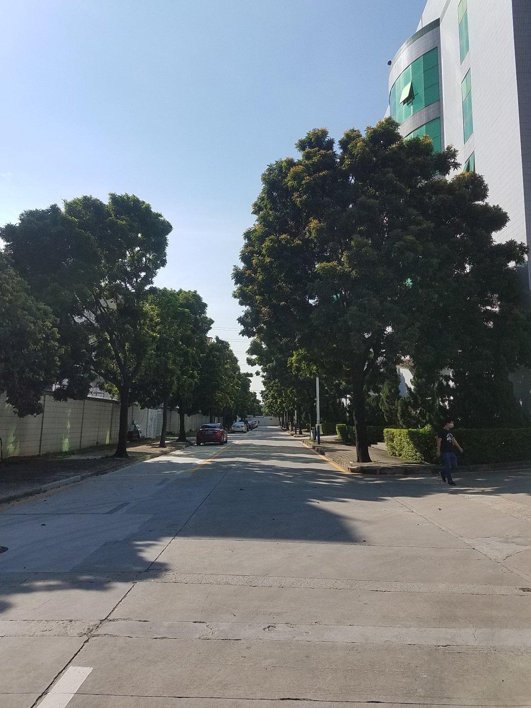 西乡臣田107国道大型工业园内新出楼上2600平米厂房出租-图7
