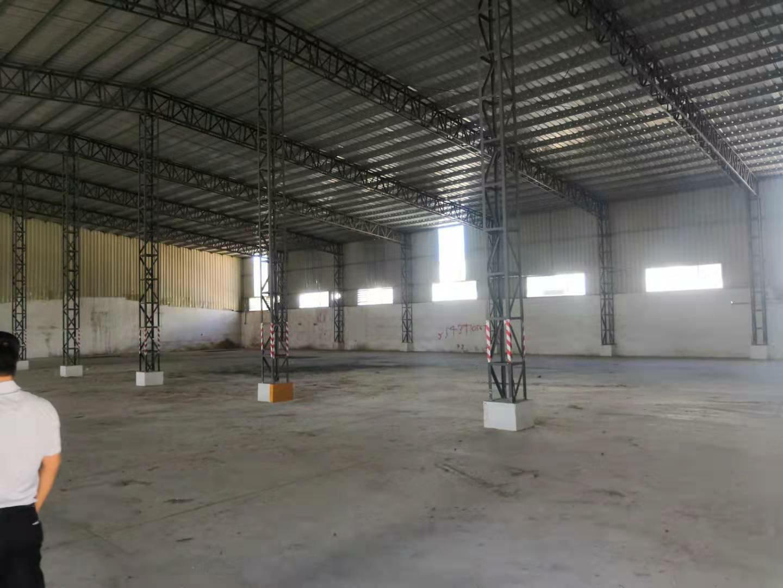 园洲镇原房东,独门独院钢构厂房6000平方 滴水9米-图2