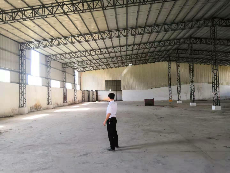 园洲镇原房东,独门独院钢构厂房6000平方 滴水9米-图3