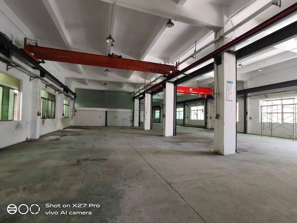 塘厦大坪新出标准一楼1500㎡带现成行车水电齐全有办公室火抢-图3