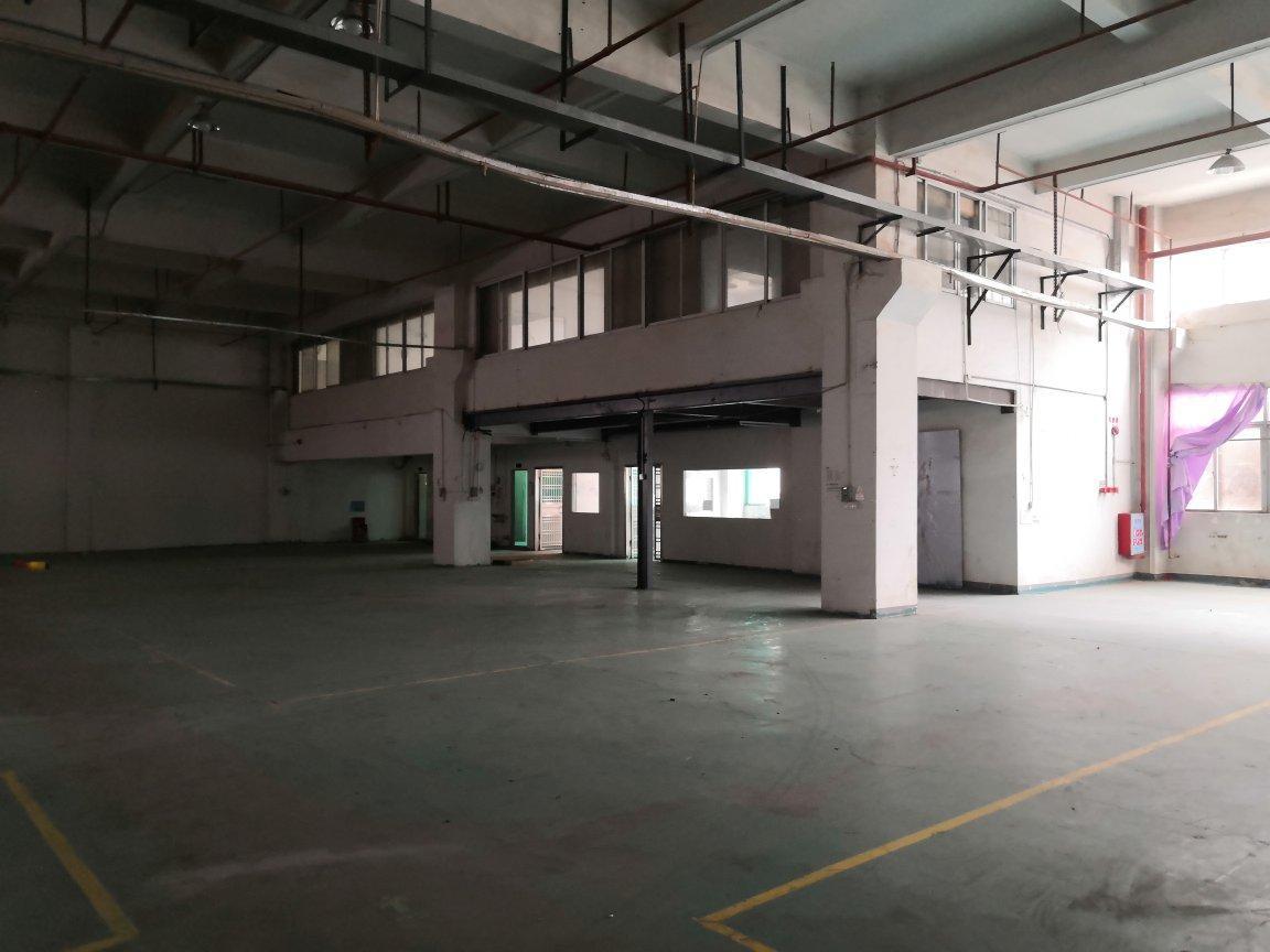 红本厂房一楼6331平出租跨度10米带牛角,带天然气,带水电