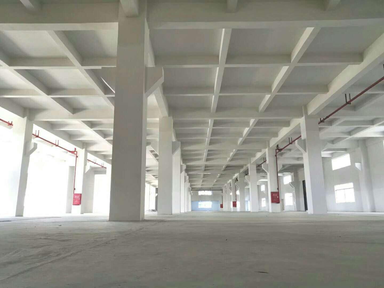 全新标准厂房1楼出租