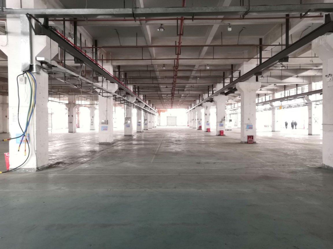 红本厂房一楼6331平出租跨度10米带牛角,带天然气,带水电-图4
