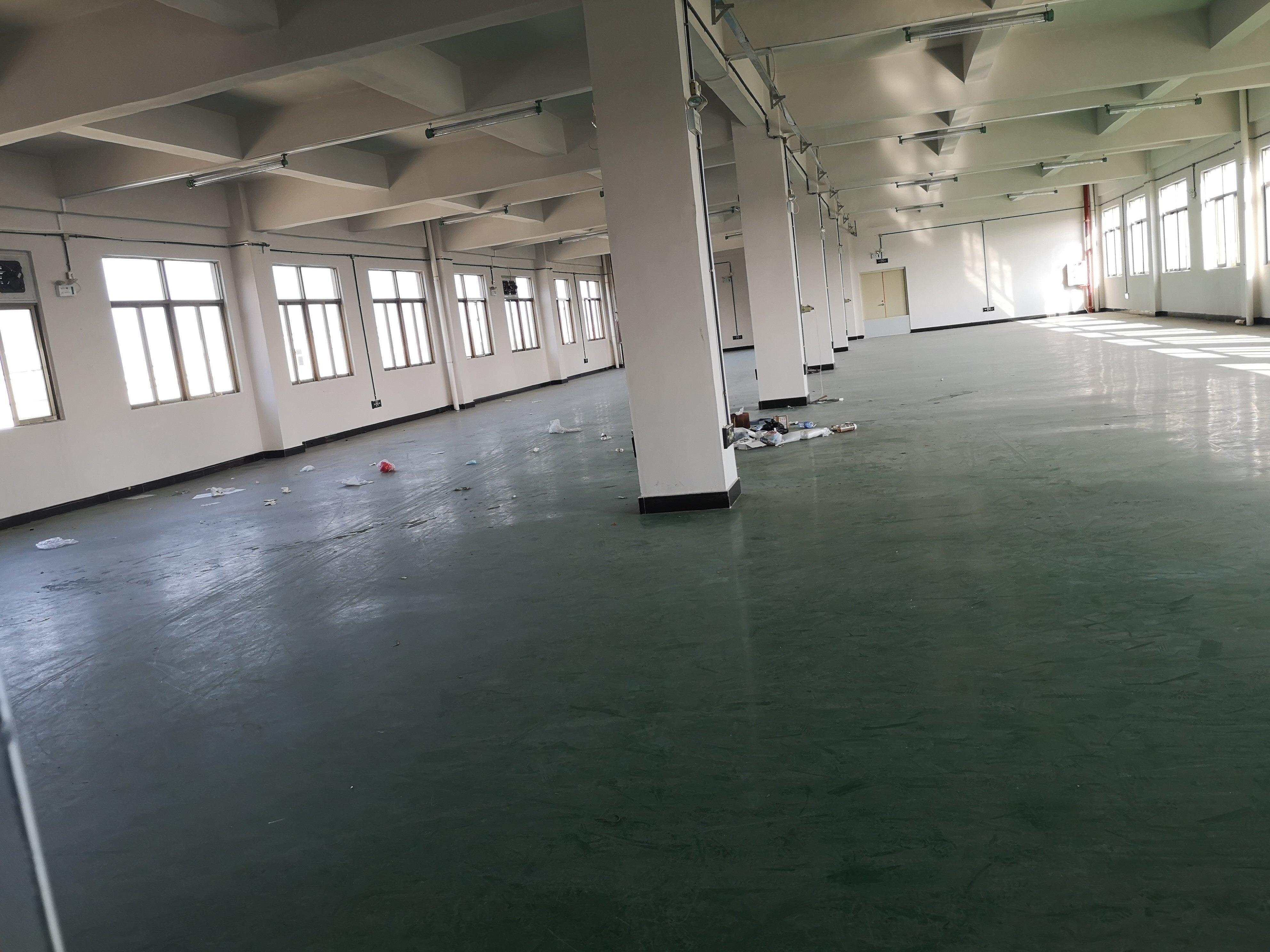 石排镇原房东红本独院厂房分租楼上一层850平米-图2