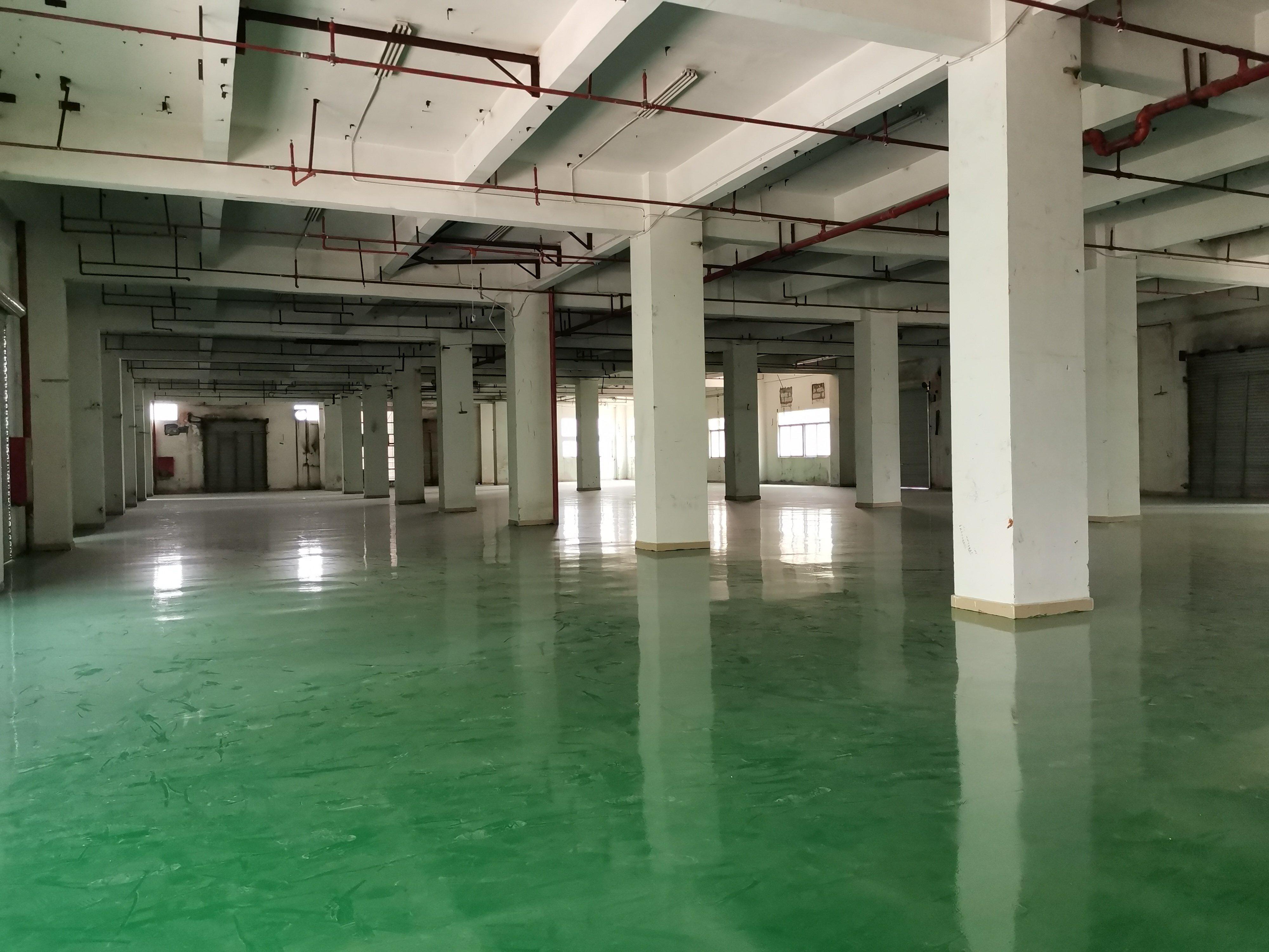布吉李朗单层2800带消防喷淋地坪漆厂房三台电梯可做仓库