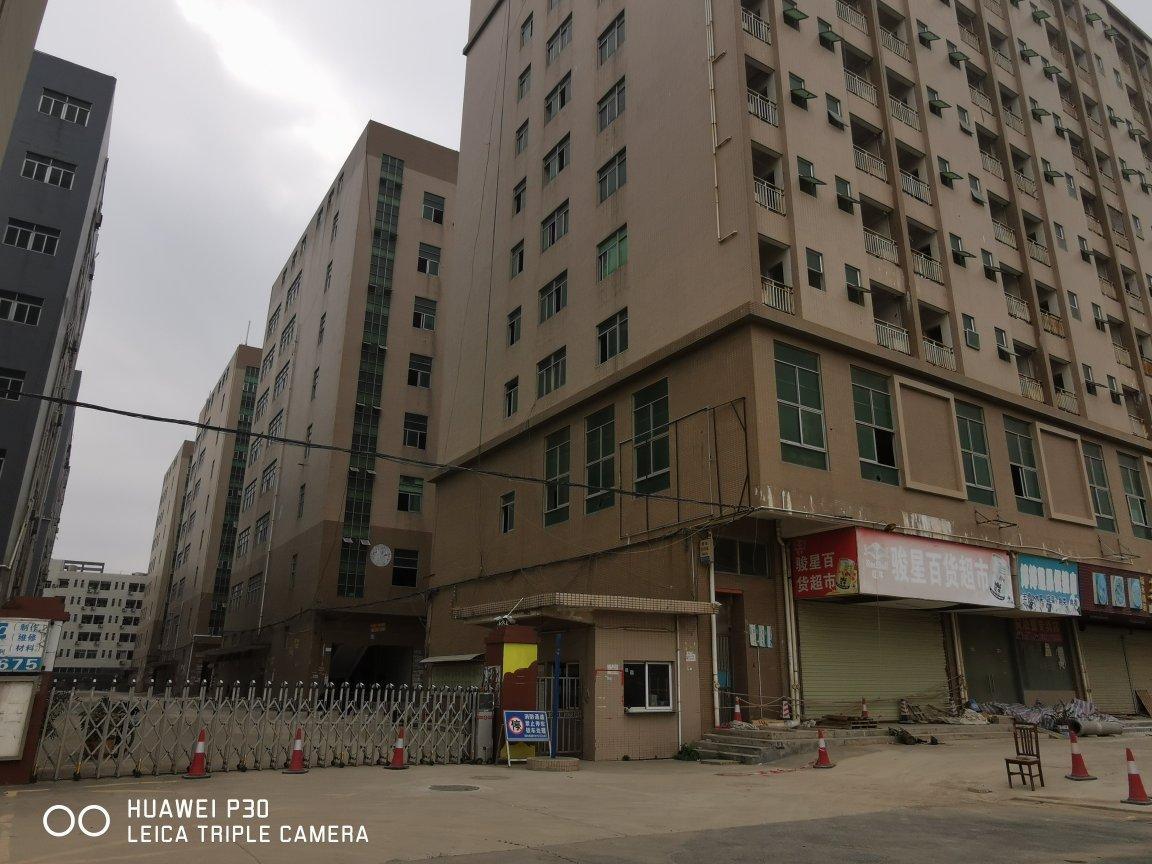 福永原房东和平厂房890平带装修-图4