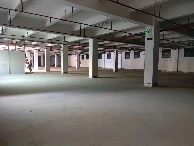 福永唯一独院带红本原房东厂房带卸货平台标准一楼2000平米,-图4