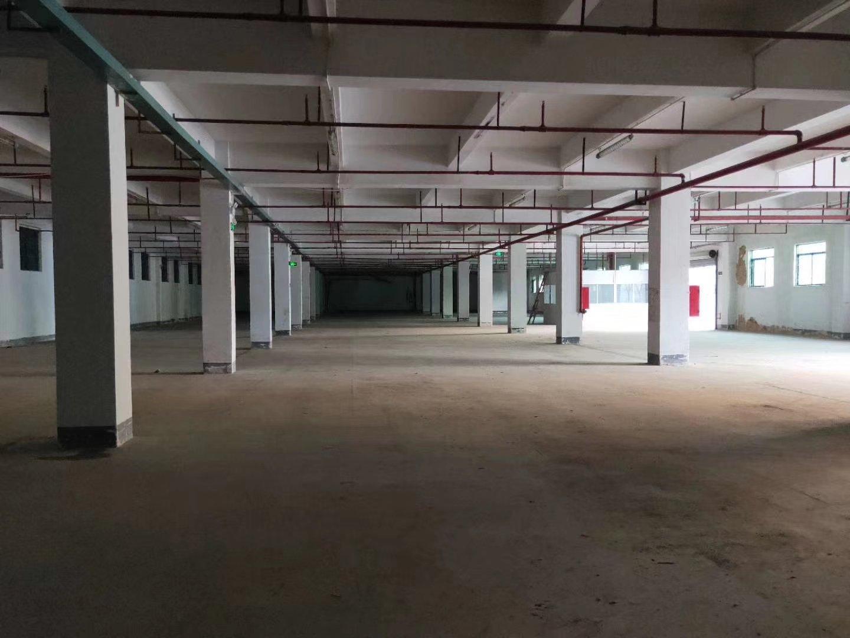 福永唯一独院带红本原房东厂房带卸货平台标准一楼2000平米,-图2