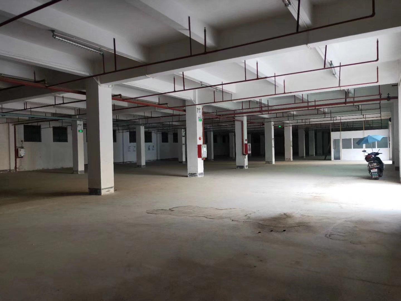 福永唯一独院带红本原房东厂房带卸货平台标准一楼2000平米,-图3