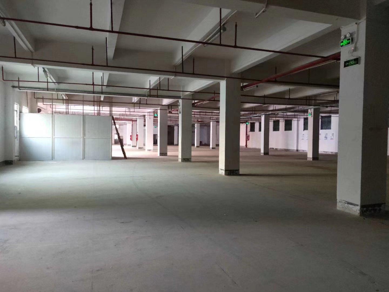 福永唯一独院带红本原房东厂房带卸货平台标准一楼2000平米,-图5