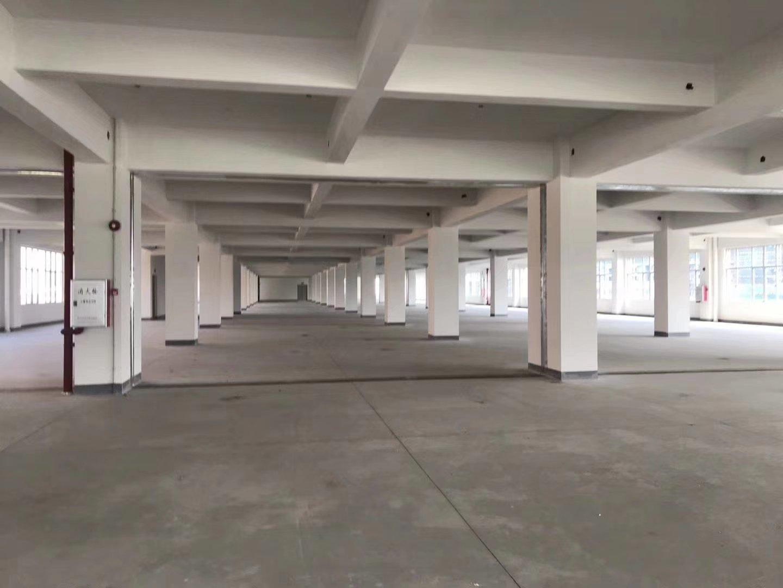 龙华大浪新出500平仓库,有卸货平台,大电梯