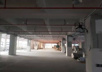 龙岗坪地主干道边上二楼3000平方红本厂房出租图片5