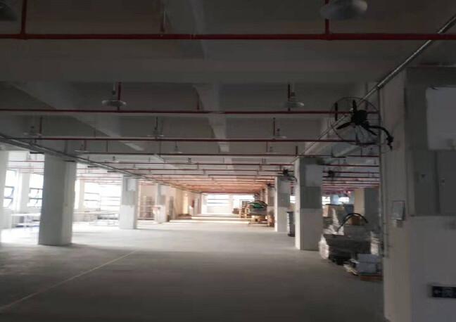 龙岗坪地主干道边上二楼3000平方红本厂房出租