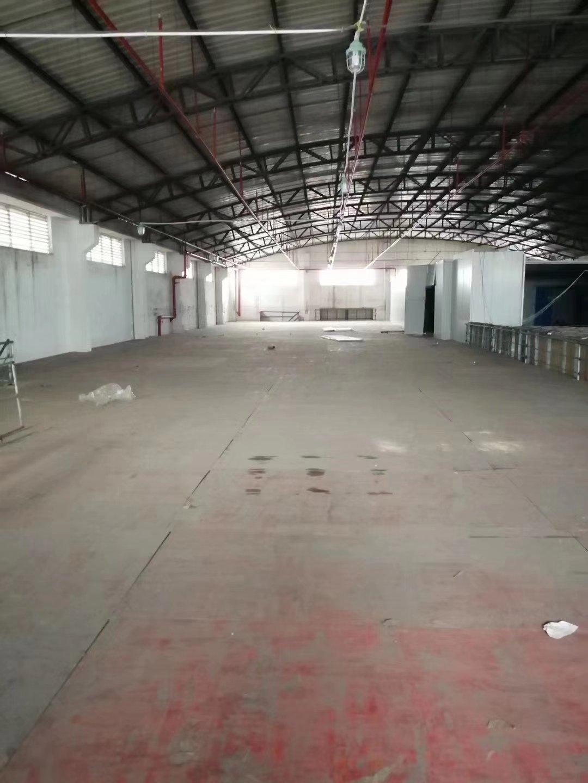 东凤镇成熟工业区单一层星棚1230方,阁楼600-图2