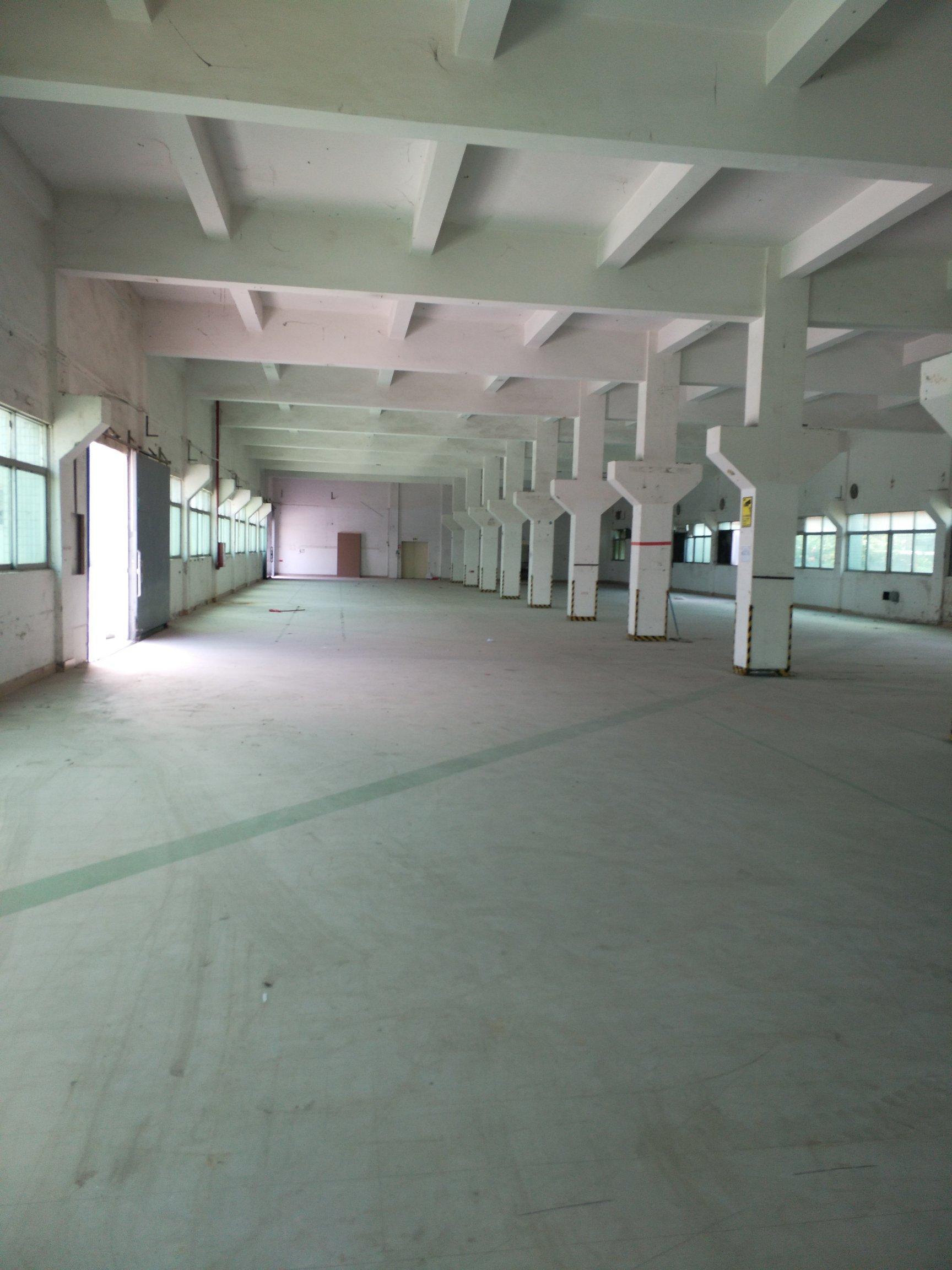 横沥新出工业园一楼1600平方,6米高,带牛角,干净整洁